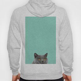 Duck Egg Blue British Short-hair Wall Decor Cat Clock Hoody