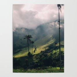 Salento Wax Palms Poster