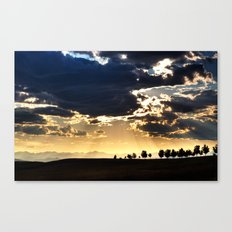 Quest After Truth Canvas Print