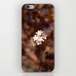 Blossom (Square) iPhone Skin