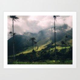 Salento Wax Palms Art Print