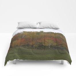 Autumn's Colors Comforters