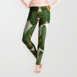 tropical floral Leggings