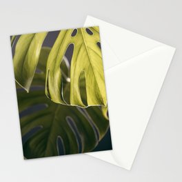 Monstera Study #2 Stationery Cards