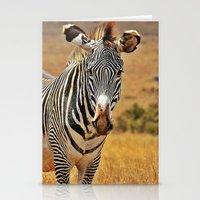 zebra Stationery Cards featuring Zebra by minx267