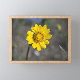 Single Yellow Flower Framed Mini Art Print