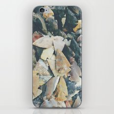 Desert Relics iPhone & iPod Skin