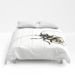Longhorn Beetle Comforters