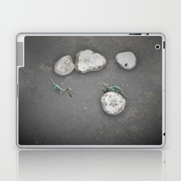 Spooky Bottoms Discovery Laptop & iPad Skin