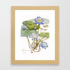 Blue Water Lily Botanical Framed Art Print