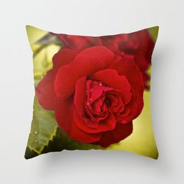 Red Rose With Droplets Throw Pillow