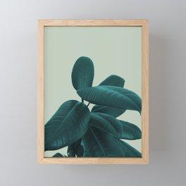 Ficus Elastica #8 #GreenLily #decor #art #society6 Framed Mini Art Print