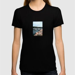 Waiting out the storm T-shirt