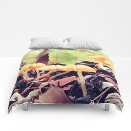 Toadstools in the Rain Comforters