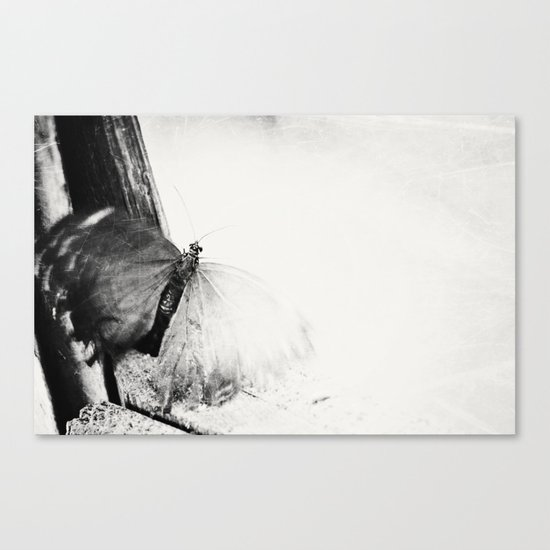 trapped ... Canvas Print