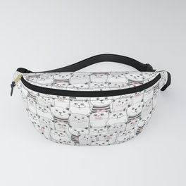 017 Fanny Pack