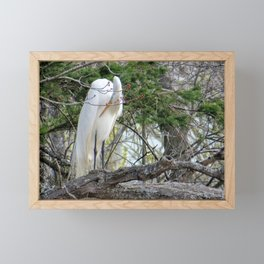 GREAT WHITE EGRET (4 OF 4) - BOWING Framed Mini Art Print