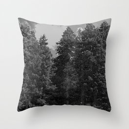 Happy Earth Day Throw Pillow
