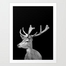 Deer Black Art Print