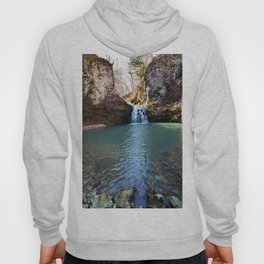 Alone in Secret Hollow with the Caves, Cascades, and Critters, No. 21 of 21 Hoody