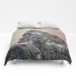 Externsteine top of the rock Comforters