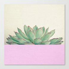 Succulent Dip Canvas Print