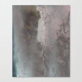 negative sea Canvas Print
