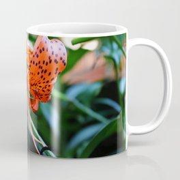 Sunlit Shimmy Coffee Mug