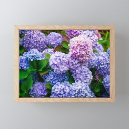 Purple Hydrangeas Framed Mini Art Print