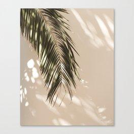 tropical palm leaves vi Canvas Print