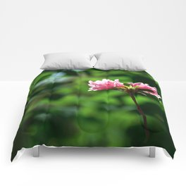 Blossoms One Comforters