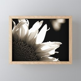 Sunflower-B&W Framed Mini Art Print