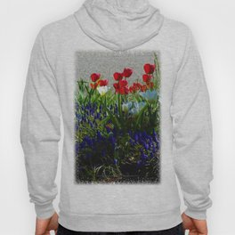 """Red, White and Blue Flowers """"America in Bloom""""  Jeronimo Rubio Photography 2016 Hoody"""