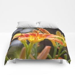 Lilies in the Sunshine Comforters