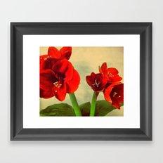 My Christmas flower Framed Art Print
