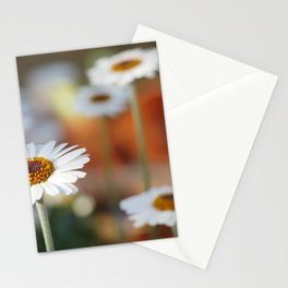 Daisys   marguerite Stationery Cards