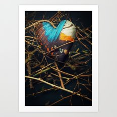 Butterfly heart amongst thorns Art Print