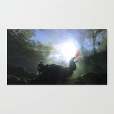 Depths of the Horizon Canvas Print