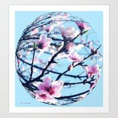 Peach Blossom Globe Art Print