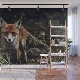 Curious Fox II Wall Mural