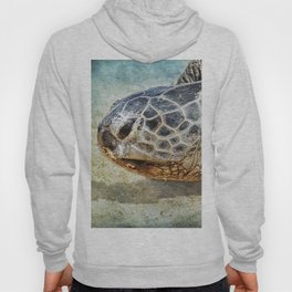 Green Sea Turtle Portrait Hoody