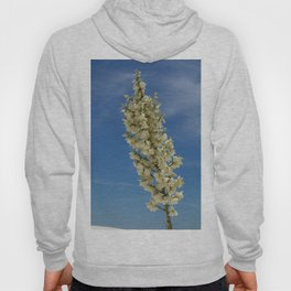 Soap Yucca Blossoms Hoody