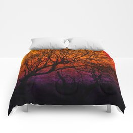 Ever After, Trees Silhouette Sunset Comforters