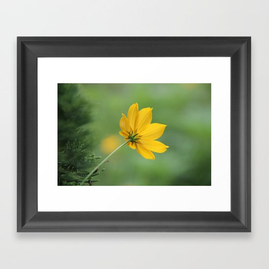 colors of nature 2 Framed Art Print