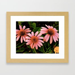 Flowers 4 Framed Art Print