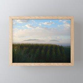 Corn Mountain and Fog Framed Mini Art Print