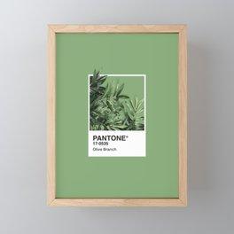 Pantone Series – Olive Branch Framed Mini Art Print