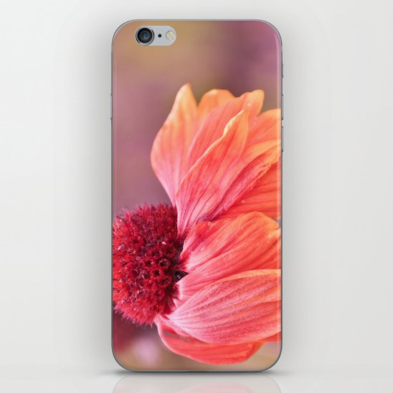 open your heart... iPhone & iPod Skin