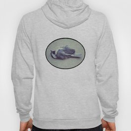 Little Voyager Hoody