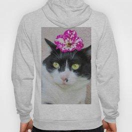 Khoshek sweet kittycat Hoody